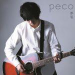 peco 1stアルバム『夢屑』がリリースされました!